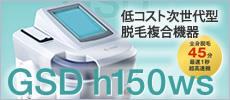 h150-Ws  GSD